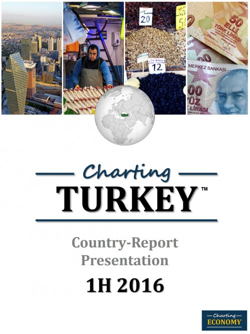 Charting Turkey's Economy, 1H 2016